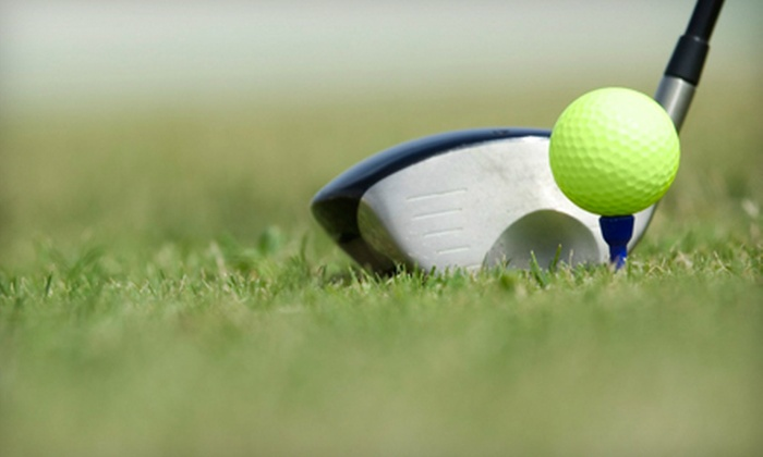 Nicky Martin - Southeast Jacksonville: One or Two One-Hour Golf Lessons from Nicky Martin at Windsor Parke Golf Course (Up to 59% Off)