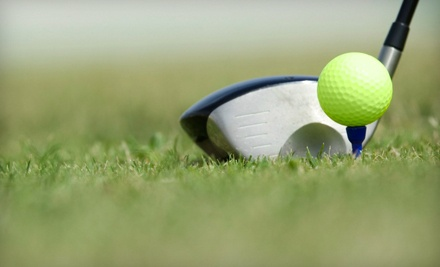 1-Hour Golf Lesson (an $80 value) - Nicky Martin in Jacksonville