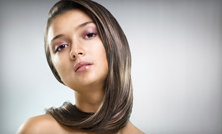 Cut and Color Package (a $115 total value) - Shannon Leigh's Salon in Medina