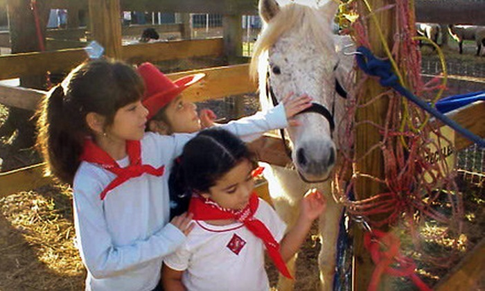 Fiesta Farm - San Antonio: $7 for Petting Zoo Outing with Pony Rides for Two (Up to $14 Value)