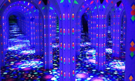 Mirror-Maze Adventure for Two, Four, or Six at Amazing Mirror Maze (Up to 50% Off)