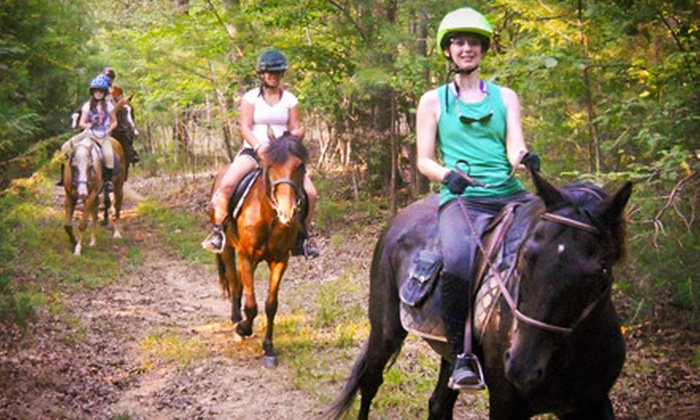 White Briar Farms - Eno: Five-Day Spring Equestrian Camp March 18–22, March 25–29, or April 1–5 at White Briar Farms (Half Off)