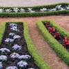 $25 for $500 Worth of Irrigation System Installation