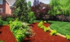 1-888-Got-Mulch - Bonner - Loring: $75 for $150 Worth of Colored Mulch from 1-888-Got-Mulch