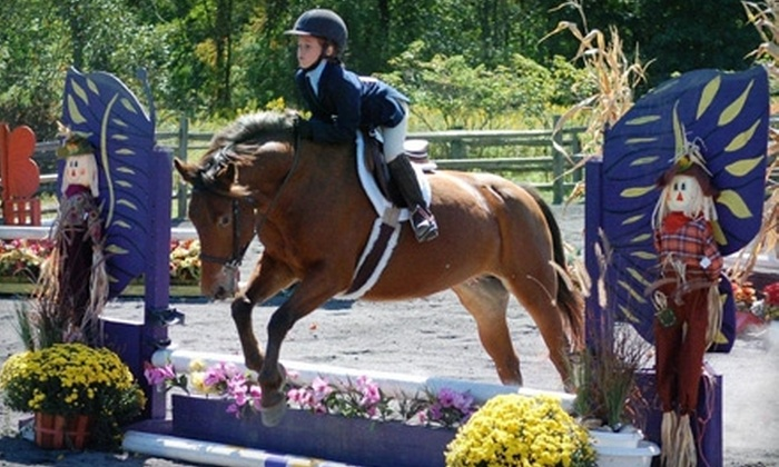 Heaven's Gate Farm - Willow Grove: $49 for Three One-Hour Horse-Riding Lessons at Heaven's Gate Farm in Pipersville