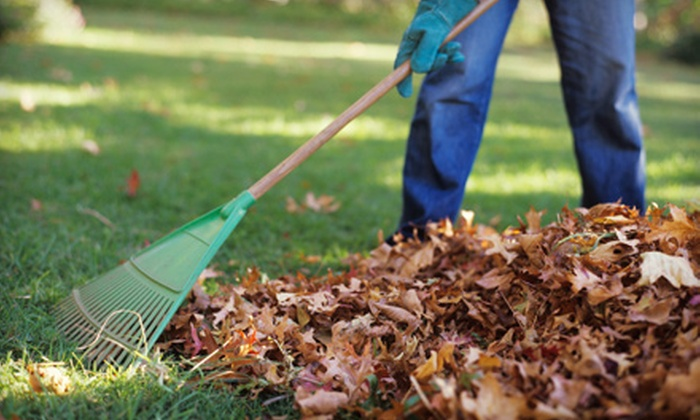 Custom Cuts Tree Care - Oak Crest: $99 for Two Hours of Fall Landscaping Cleanup from Custom Cuts Tree Care ($250 Value)
