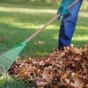 60% Off Fall Landscaping Cleanup