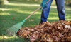 Custom Cuts Tree Care: $99 for Two Hours of Fall Landscaping Cleanup from Custom Cuts Tree Care ($250 Value)