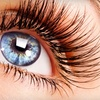 $100 for $1,500 Toward LASIK Eye Surgery