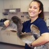 $5 Donation to Rescue Injured Seabirds