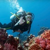 Up to 62% Off Scuba Classes in Gulf Breeze