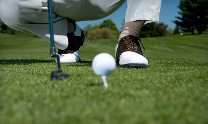 Bogeys Sports Park - Richmond: $15 for Five Passes to Bogeys Sports Park