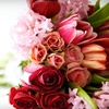 Up to 52% Off at Schulz's Florist