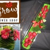 Half Off at Grow Flower Shop