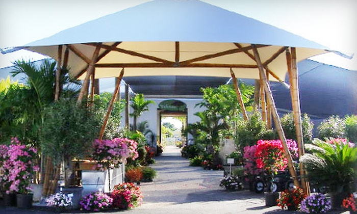 Amelia's SmartyPlants - Lake Clarke Shores: $25 for $50 Worth of Plants and Gardening Accessories at Amelia's SmartyPlants in Lake Worth