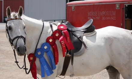 One or Two 60-Minute Horseback-Riding Lessons at Centennial Acres (Up to 52% Off)