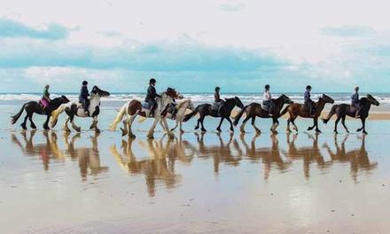 One-Hour Village Horse Ride