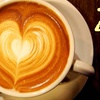 Half Off at Zoka Coffee Roasters & Tea Company