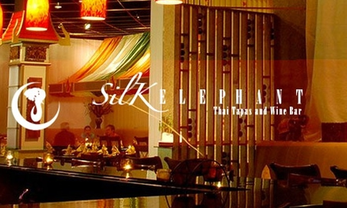 Silk Elephant - Squirrel Hill South: $30 for $60 Worth of Thai Tapas, Noodle Dishes, and Beverages at Silk Elephant