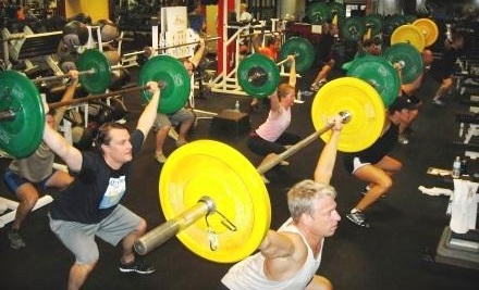 Body Construction Personal Trainers - Body Construction Personal Trainers in Tampa