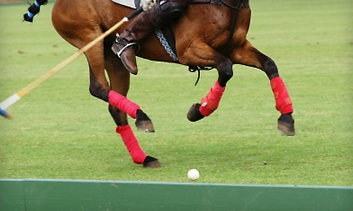 Overbrook Polo Club - Wagener: $50 for a Two-Hour Polo Lesson Plus a 2011 Membership to the U.S. Polo Association at Overbrook Polo Club in Wagener (Up to $450 Value)