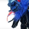 71% Off Masquerade Party Package