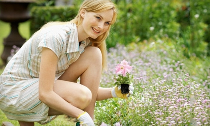 Lotus Gardens - Fresno: $15 for $30 Worth of Plants and Garden Supplies at Lotus Gardens