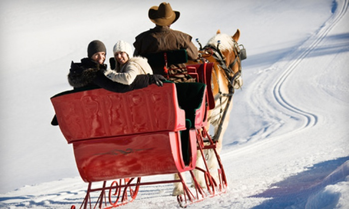 Horse Trekkin Alaska - Huffman / O' Malley: 30-Minute Sleigh Ride with Fondue and Fire Pit for Two or Up to Six from Horse Trekkin Alaska (Up to 57% Off)