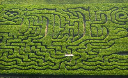 Corn-Maze Outing for 2 (a $30 value) - Schwalliers Country Basket in Sparta