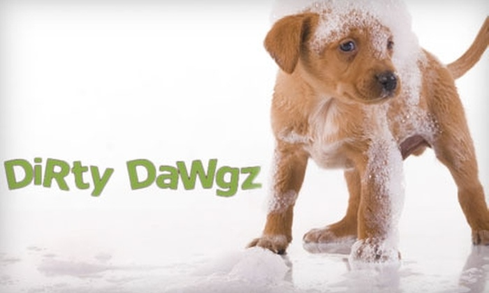 Dirty Dawgz - Plano: $20 for $40 Worth of Dog Grooming and Pup Pampering at Dirty Dawgz in Plano