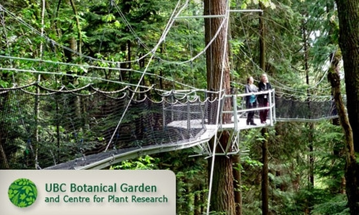 Greenheart Canopy Walkway at UBC Botanical Garden & Greenheart Canopy Walkway at UBC Botanical Garden in - Vancouver ...