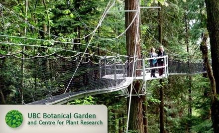 The Greenheart Canopy Walk and Garden at UBC Botanical Garden: Adult Admission - Greenheart Canopy Walkway at UBC Botanical Garden in Vancouver