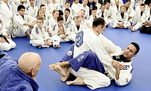 Renzo Gracie Rockland: 10 or 20 Mixed-Martial-Arts Classes at Renzo Gracie Rockland (Up to 85% Off)