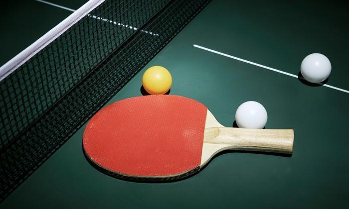 Yang's Table Tennis Club - Suwanee-Duluth: 5 or 10 Visits to Yang's Table Tennis Club (Up to 67% Off)