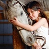 Half Off Horseback-Riding Lessons in Ledyard