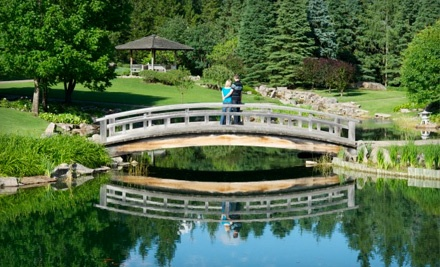 New Image Creations (a $660.00 total value) - New Image Creations in Edmonton
