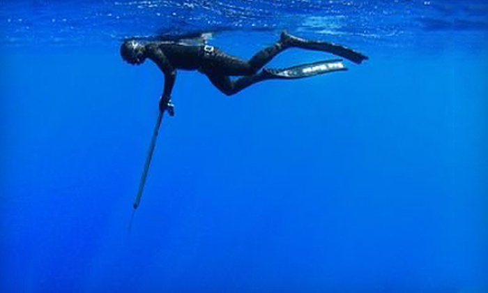 Nautilus Spearfishing - Flagami: $85 for a One-Day Freediving Introduction and Safety Course from Nautilus Spearfishing ($199 Value)