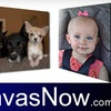 Up to 65% Off at CanvasNow.com