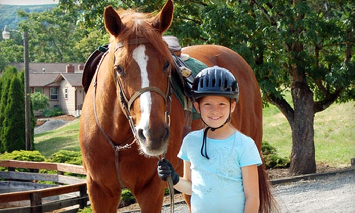 Brawley Farms - Jefferson: One or Four Private Horseback-Riding Lessons at Brawley Farms in Jefferson (Up to 69% Off)