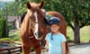 Up to 69% Off Horse-Riding Lessons in Jefferson