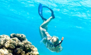 Gemini Dream Charters: Up to 51% Off Sunset or Snorkeling Cruise at Gemini Dream Charters