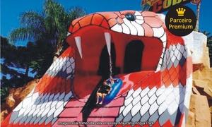 Araucária Acqua Park: Passaporte para 1, 2 ou 4 pessoas (de terça a sexta ou sábado e domingo) no Araucária Acqua Park