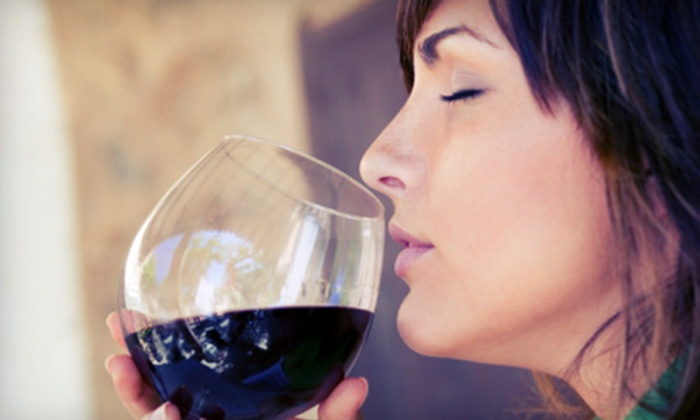 The Blue Moose Cafe - Eagle: Wine Tasting with Appetizers for Two or Four at The Blue Moose Cafe (Up to 55% Off)
