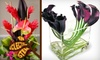 An Eclectic Stem - Old Westport: $50 Worth of Floral Arrangements at An Eclectic Stem