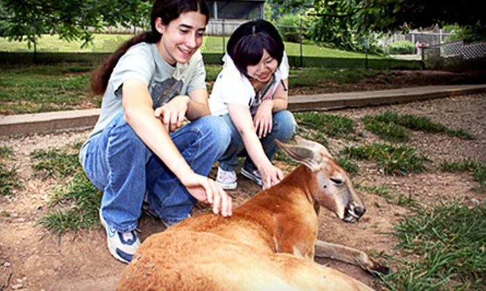 Kentucky Down Under - Horse Cave: Interactive Animal and Nature Park Visit for One Child or One Adult at Kentucky Down Under in Horse Cave (Up to 55% Off)