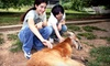 Up to 55% Off Nature-Park Visit in Horse Cave
