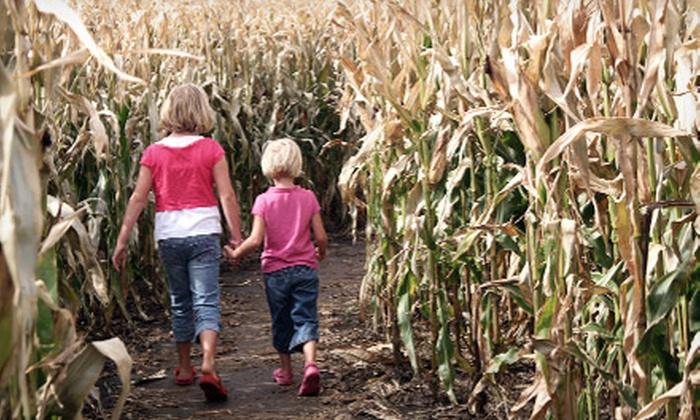 Cobb's Corn Maze & Family Fun Park - Calgary: Visit for Two, Four, or Six to Cobb's Corn Maze & Family Fun Park (Up to 52% Off)