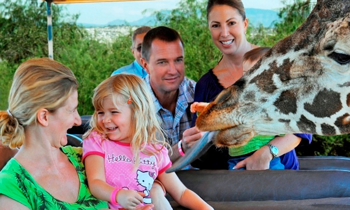 Out of Africa Wildlife Park - Camp Verde: Visit for One Child or Adult to Out of Africa Wildlife Park (Up to 40% Off)