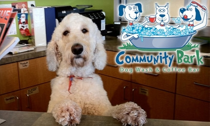 Community Bark - Bayside: $15 for a FullBark Dog Wash and One Coffee at Community Bark