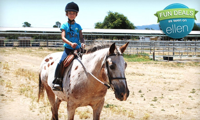 Jeanette Arnaout Training - Gilroy: One or Three One-Hour Group Horseback-Riding Lessons from Jeanette Arnaout Training in Gilroy (Up to 56% Off)